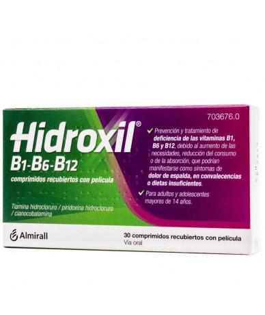HIDROXIL B1-B6-B12...